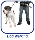 Dog Walking